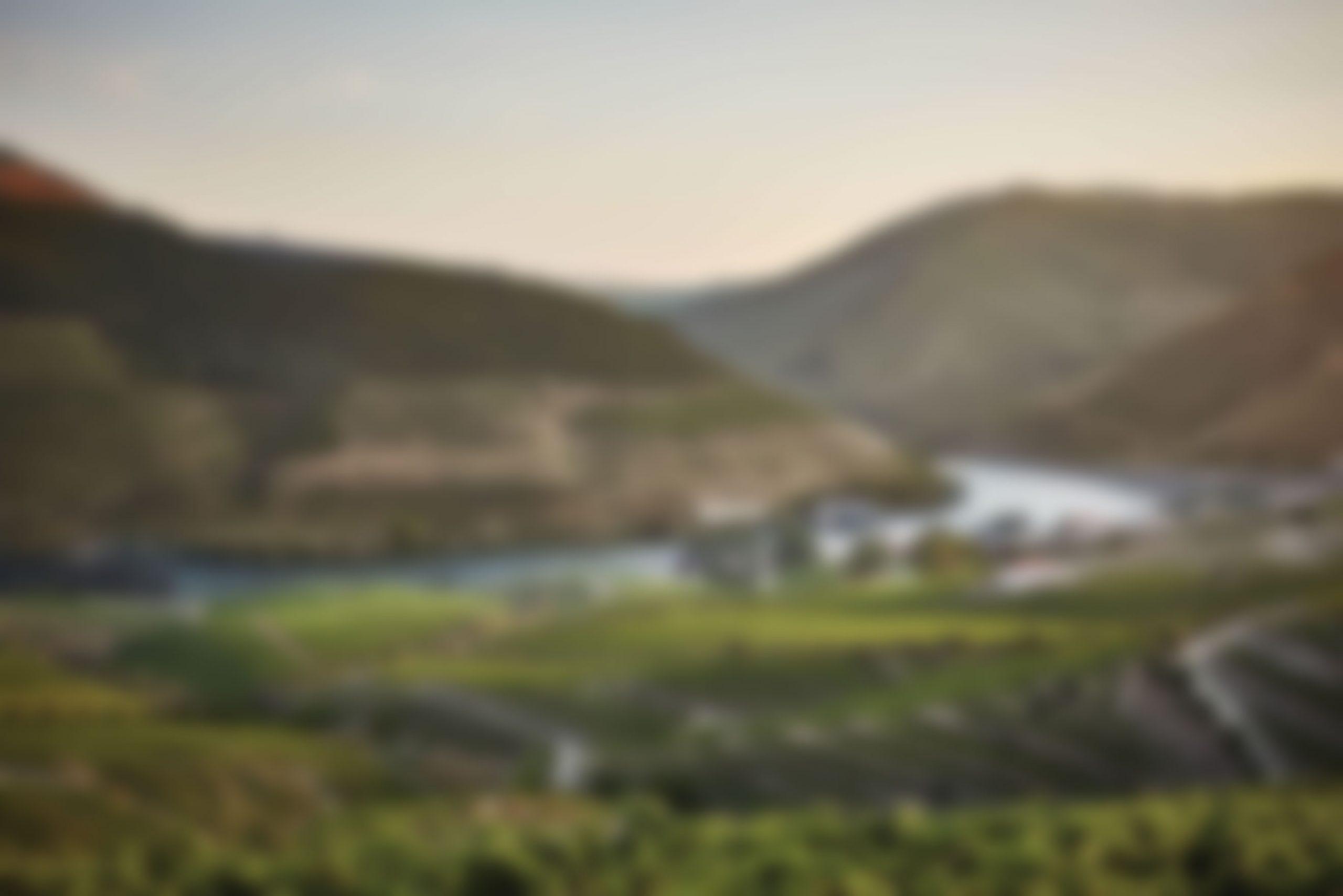 Douro-Valley-weichgezeichnet